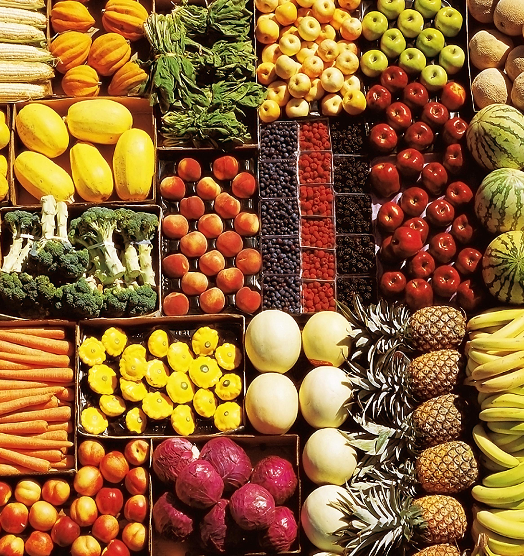 В Австрии будут раздавать нуждающимся просроченные продукты