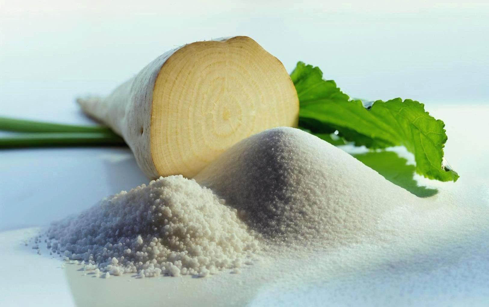 ОНФ начал борьбу с гниющими отходами сахарного завода