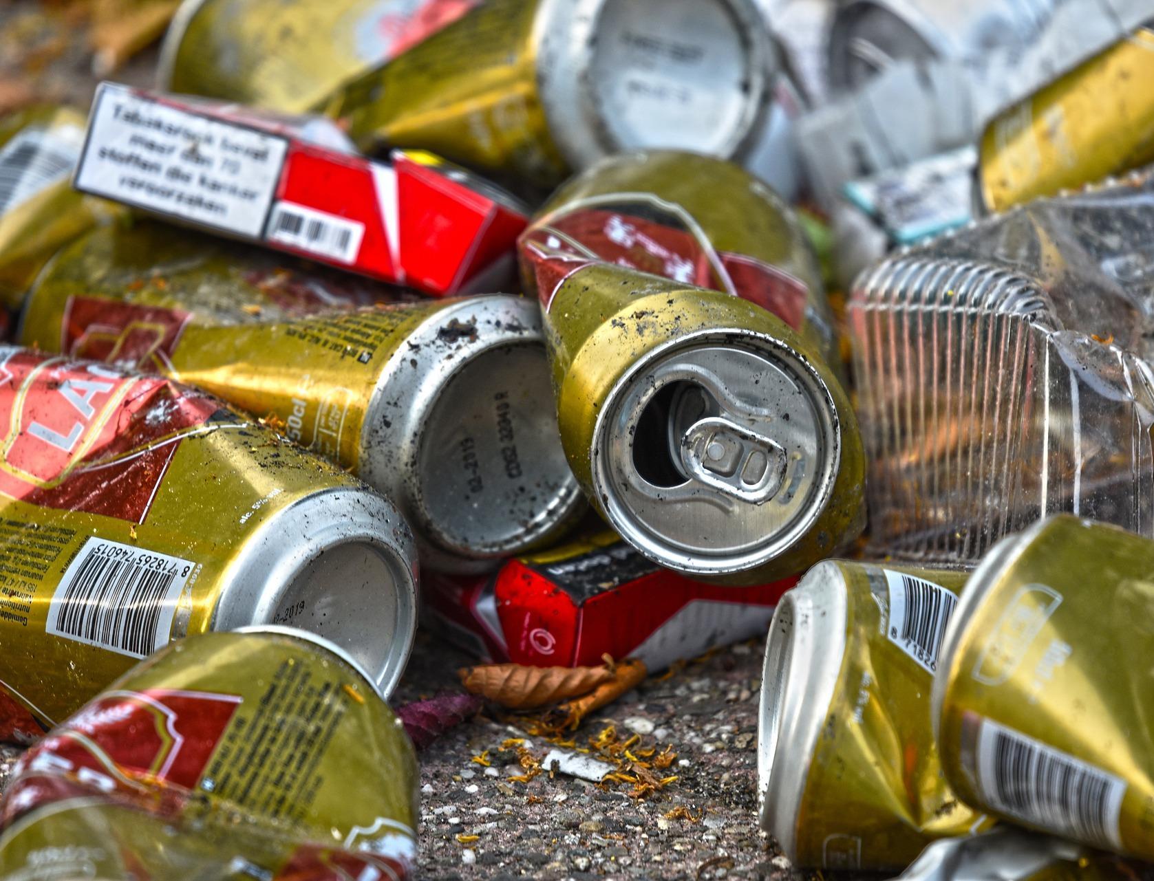 Исследование ГК ЭкоЛайн: какие отходы попадают на сортировочные комплексы Москвы
