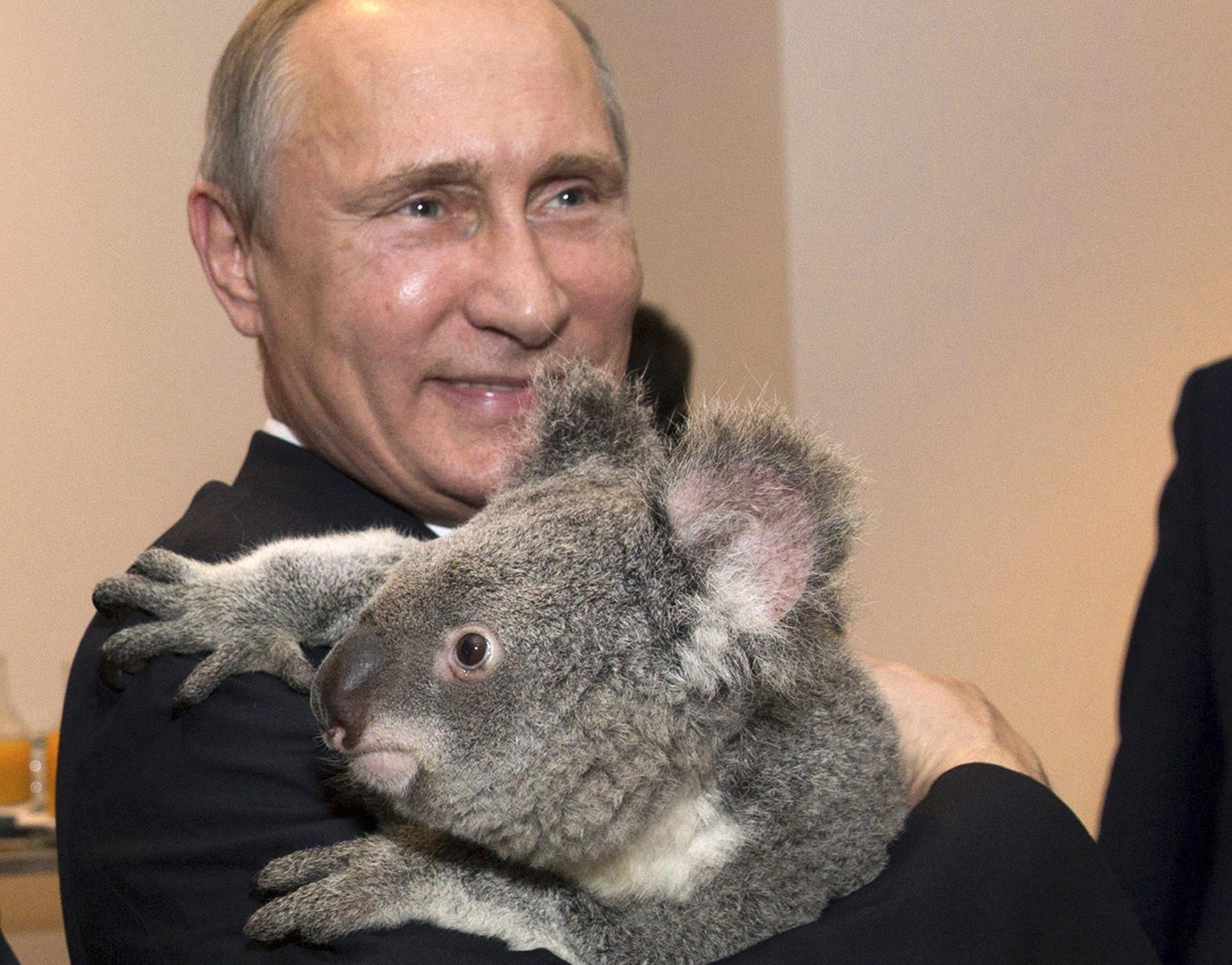Путин подписал указ о проведении Года экологии в 2017 году