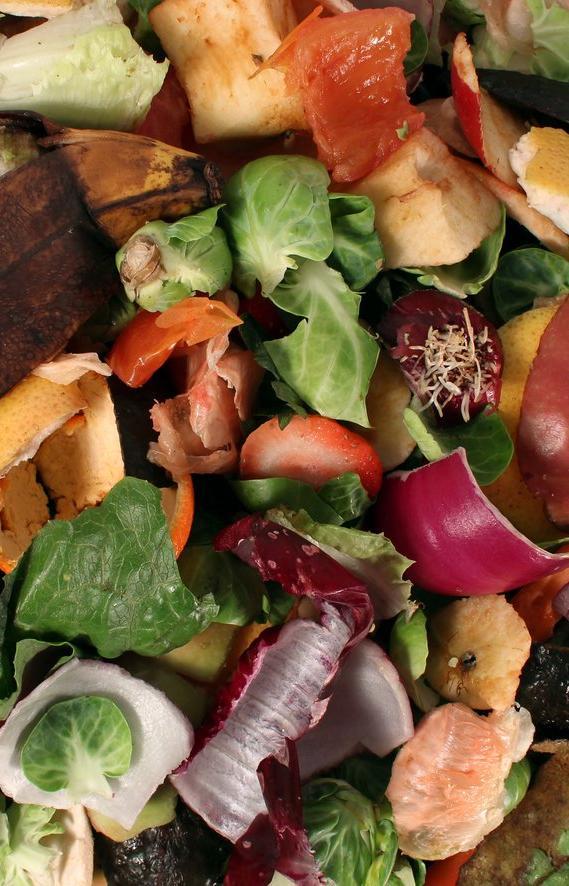 «Компост-мобиль» соберет пищевые отходы на переработку