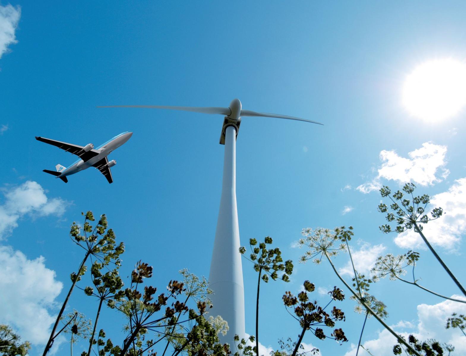Ссылка дня: как сделать путешествия максимально экологичными
