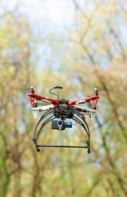 Стартап с помощью дронов восстановит пострадавшие от пожаров леса