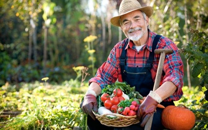 Фермерский фестиваль экологичной еды состоится в Воронеже