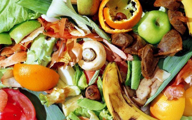Новосибирские ученые запатентовали установку для переработки органики
