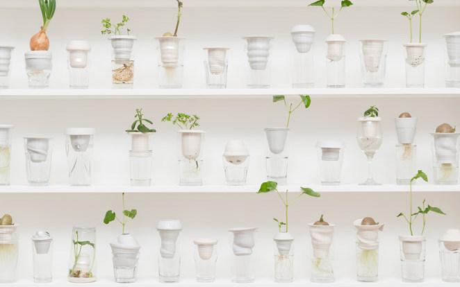 Идея дня: цветочные горшки из пивных стаканов