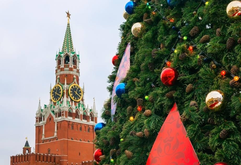 Кремлевскую елку отправят на переработку, а из ее шишек вырастят саженцы