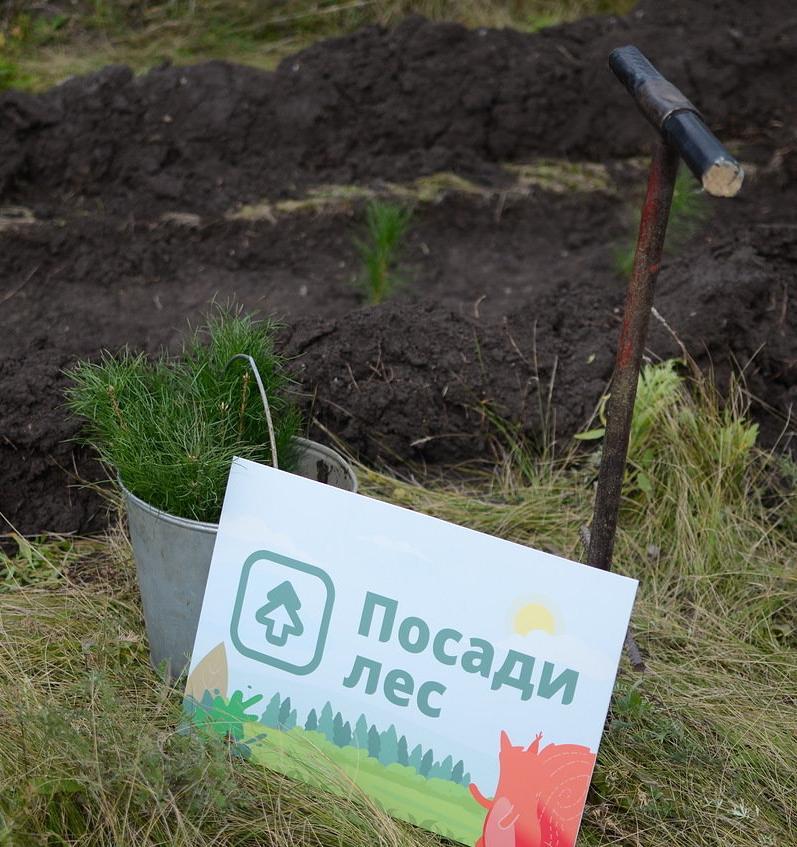 Движение ЭКА приглашает принять участие в весенних посадках деревьев