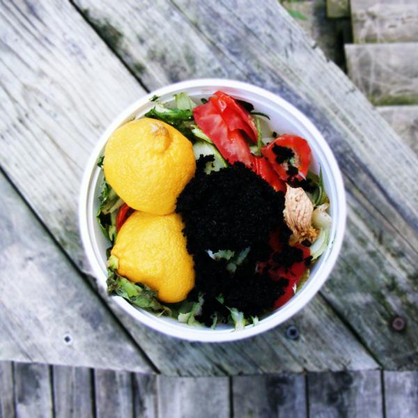 Переработка органики: что нельзя добавлять в компост
