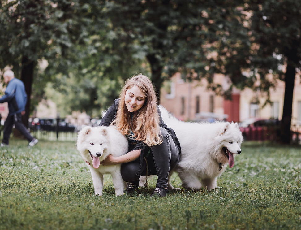 60 % москвичей убирают за своими собаками на улице