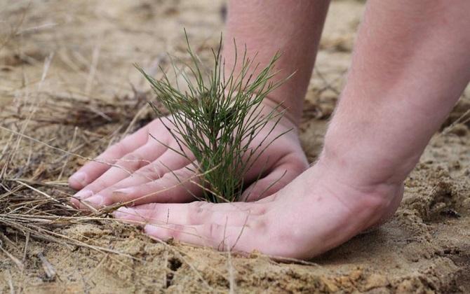 РХТУ приглашает принять участие в социиологическом исследовании об экологии