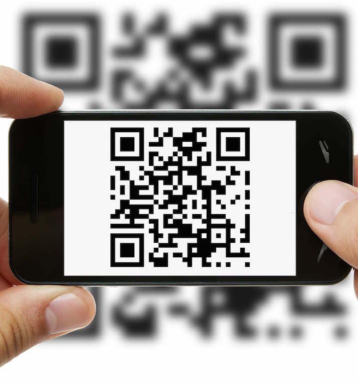 Появилось мобильное приложение для веганов