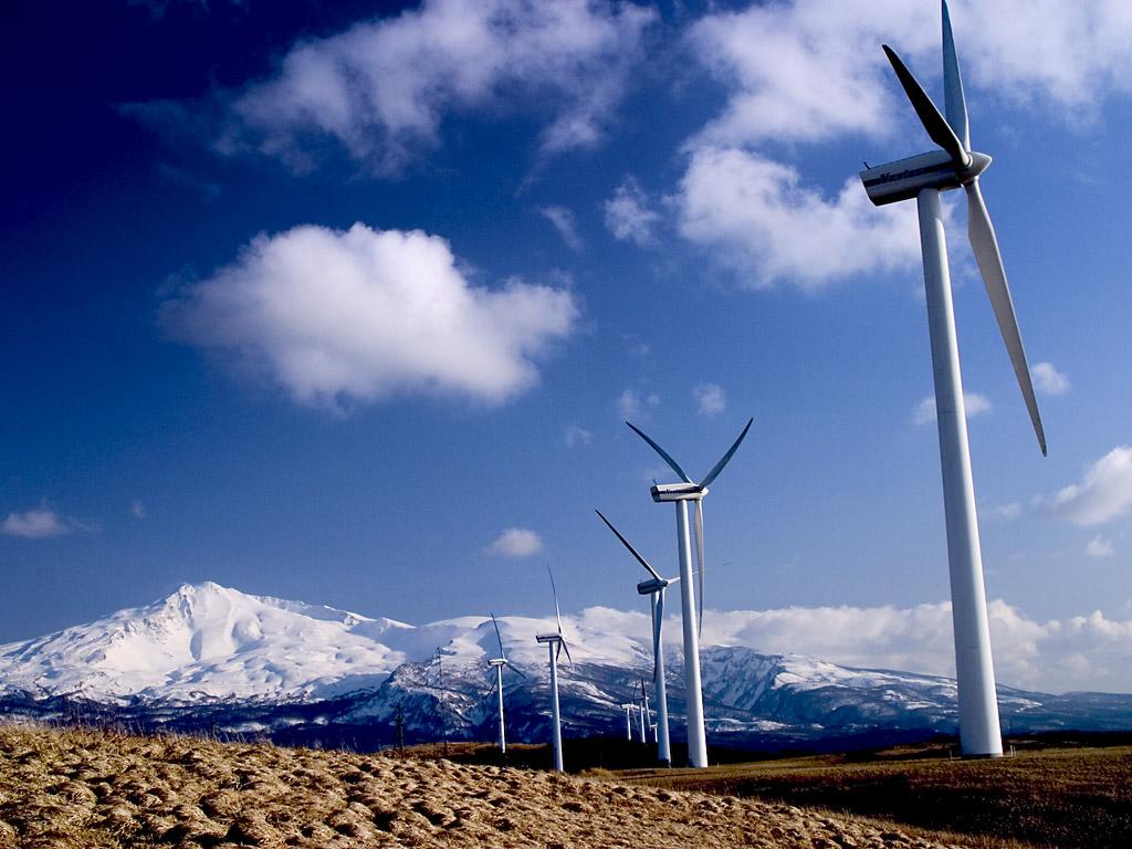 Альтернативные виды энергии обсудят на эколекции