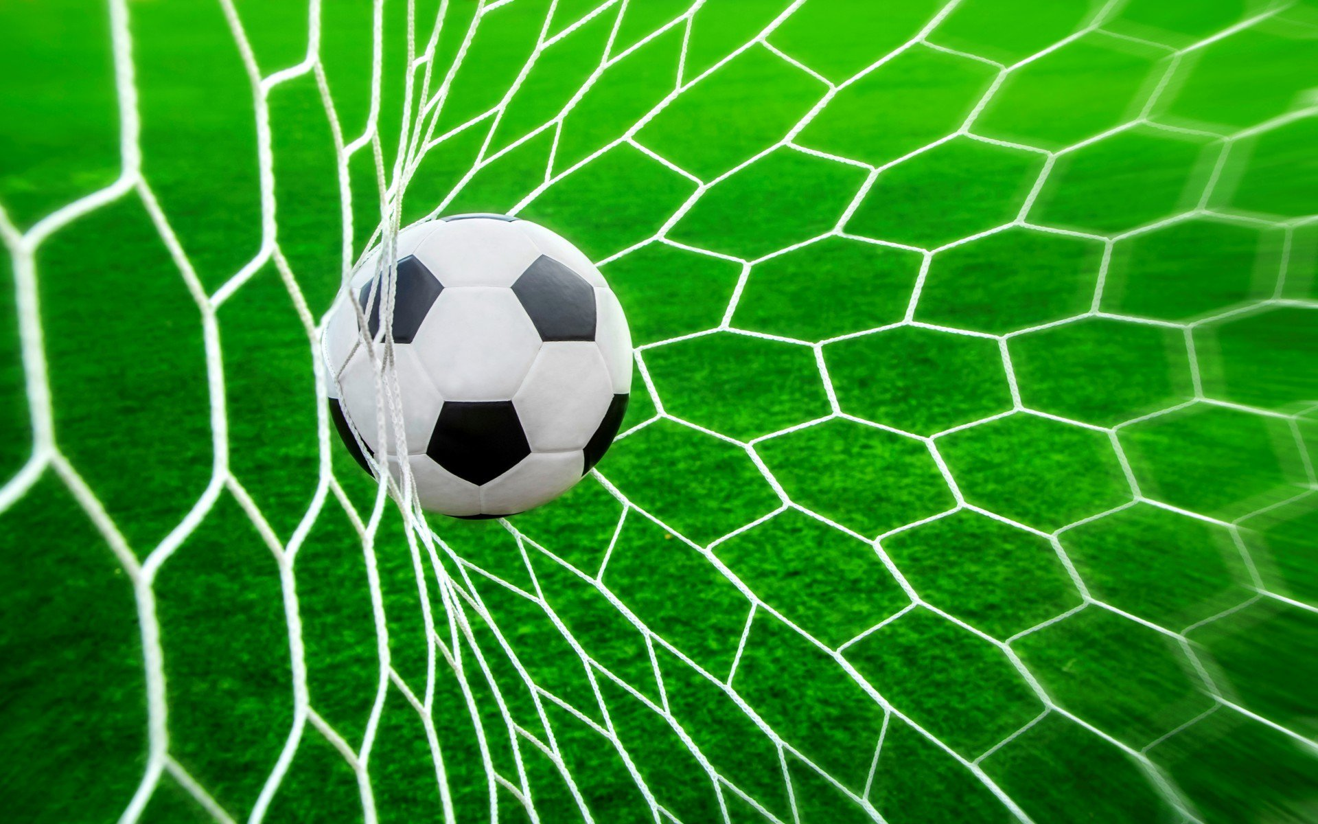 Футбольные болельщики смогут компенсировать свой углеродный след