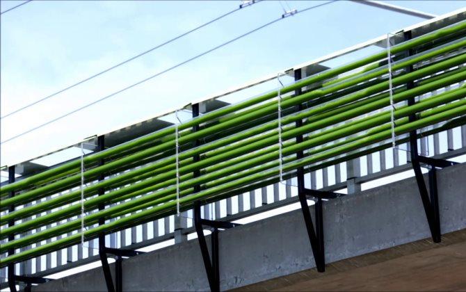 Экологичная ферма из водорослей очищает воздух на дорогах Швейцарии