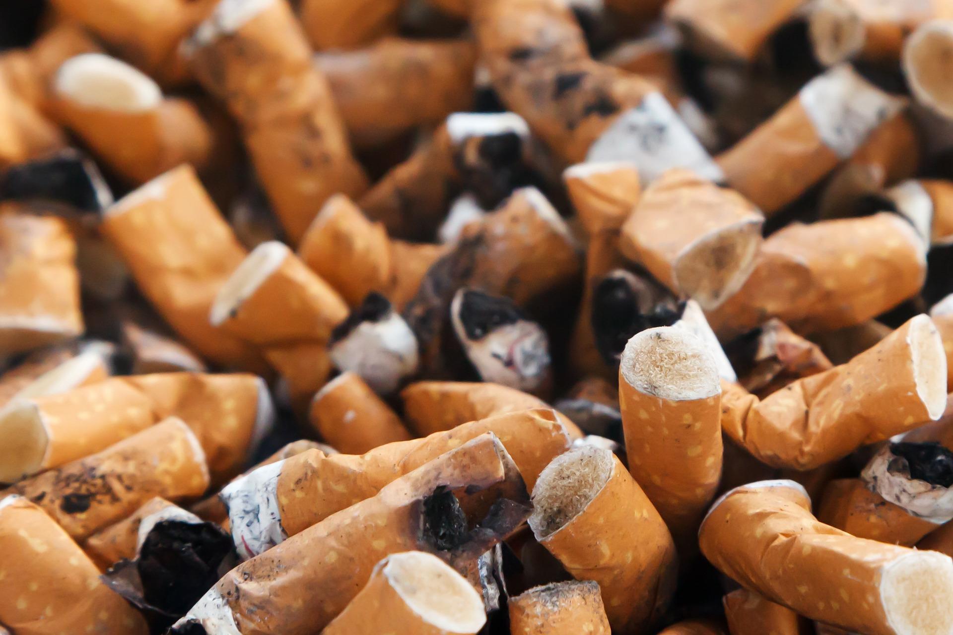 Из сигаретных фильтров будут производить асфальт