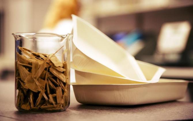 Ученые разработали экологичный картон для пищевых продуктов