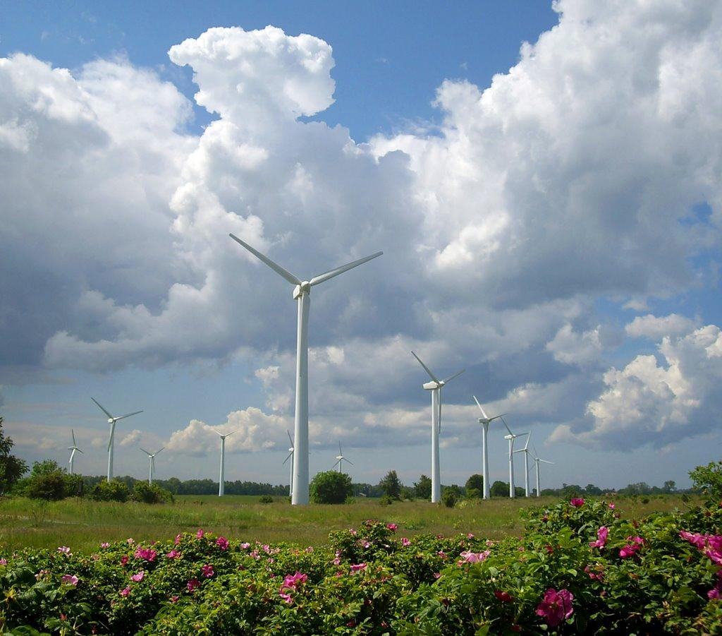В Белоруссии построят первый ветропарк