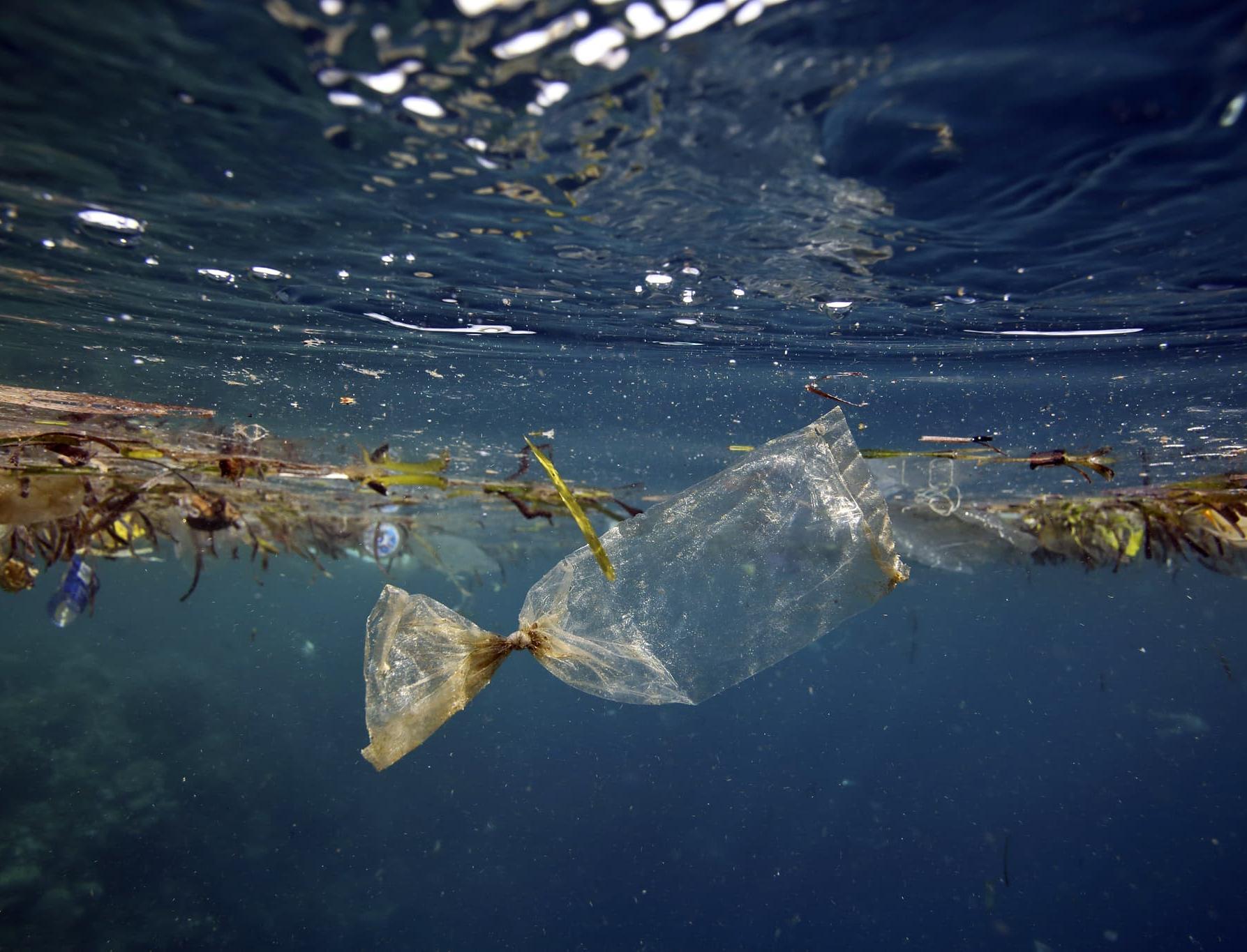 В океане появилась пластосфера