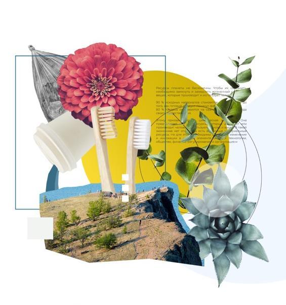 В Иркутске пройдет масштабный экологический фестиваль
