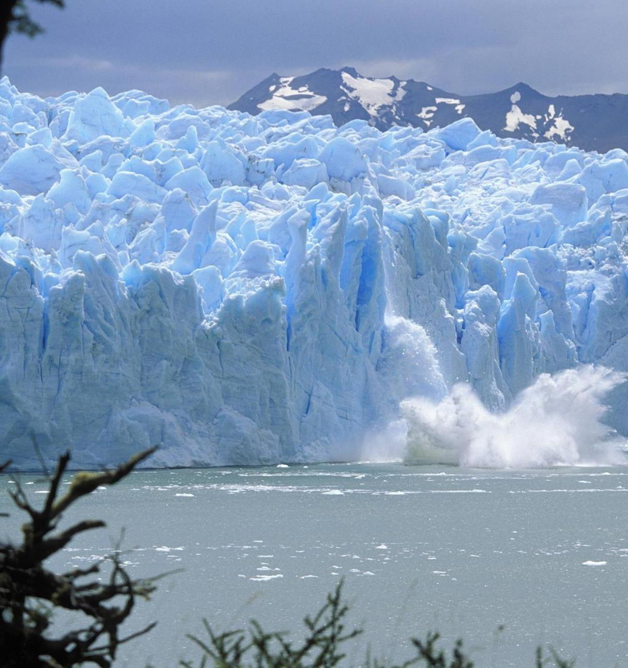 Климатический кризис откроет новые профессиональные перспективы