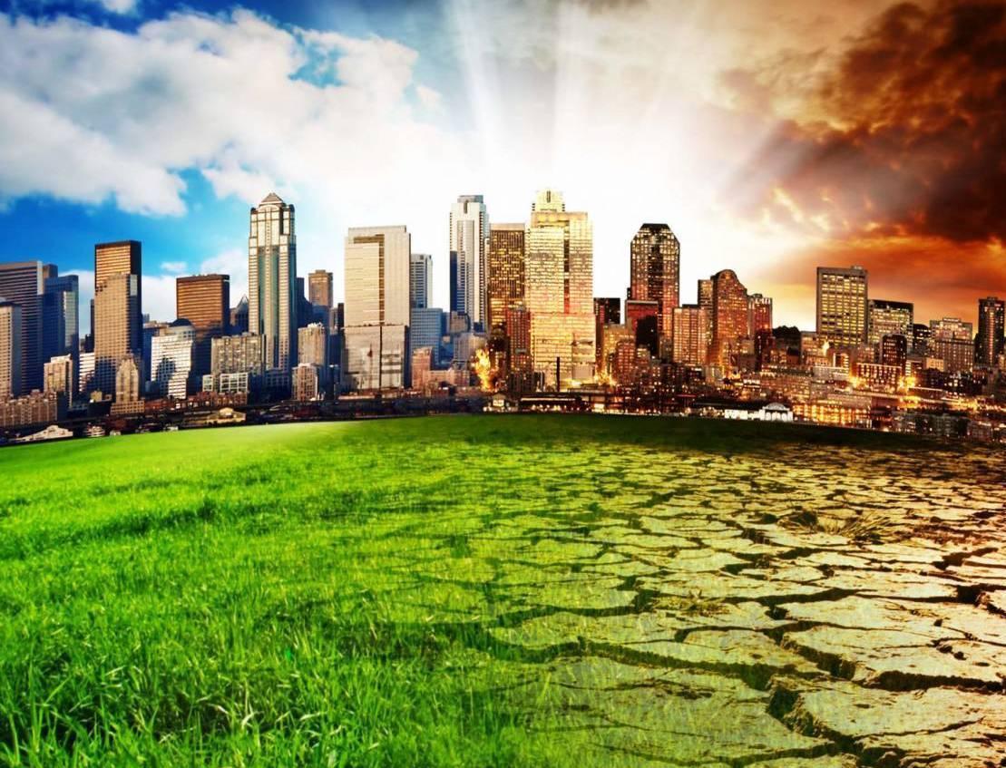 6 способов отметить День окружающей среды от движения ЭКА