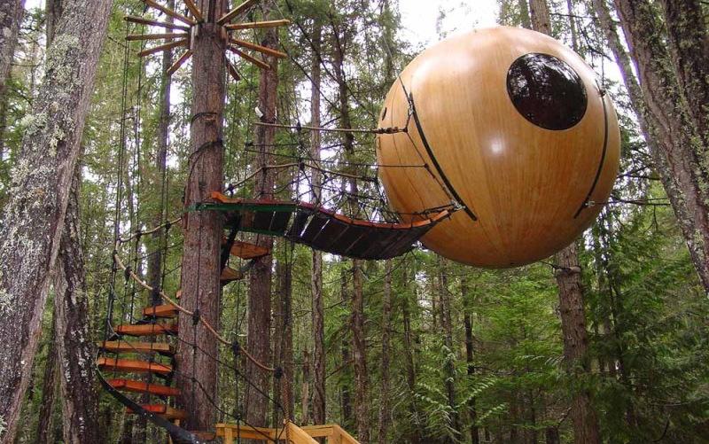 Экоотель на деревьях построят в парке «Сокольники»
