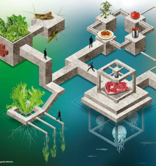 Гидропоника, слоуфуд, флекситарианство и океаническая диета: что будут есть в мире в 2025, 2050 и 2169 годах
