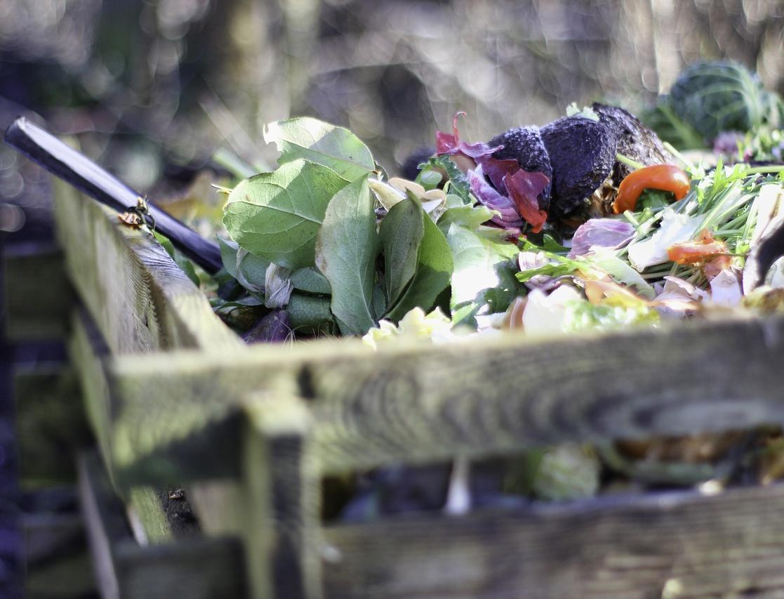 В России создали строительный утеплитель из пищевых отходов