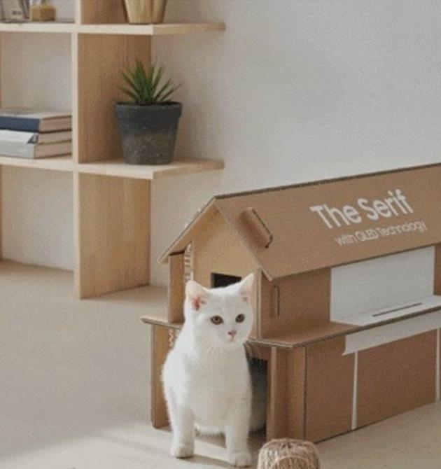 Из новой экоупаковки Samsung можно собрать мебель