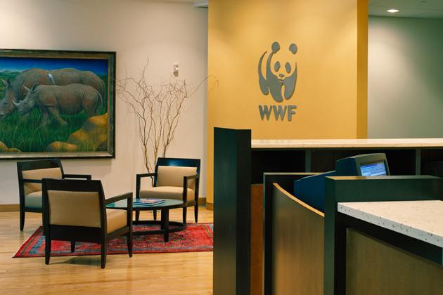 Новый офис WWF в Москве будет полностью «зеленым»