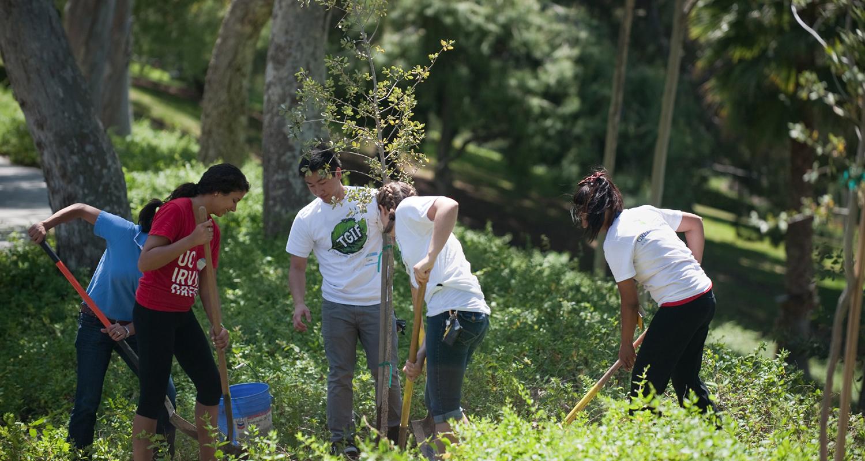 Объявлен конкурс экологических проектов