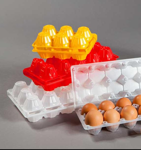 В России хотят запретить неэкологичные контейнеры для яиц и сигаретные пачки