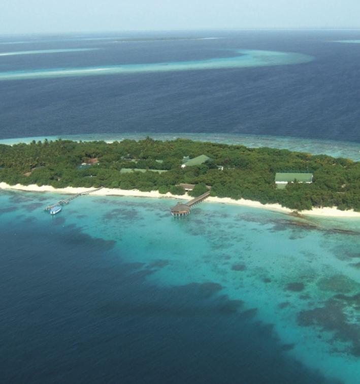Экосистема Мирового океана может восстановиться к 2050 году