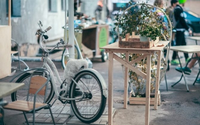 В Санкт-Петербурге пройдет фестиваль экологической культуры