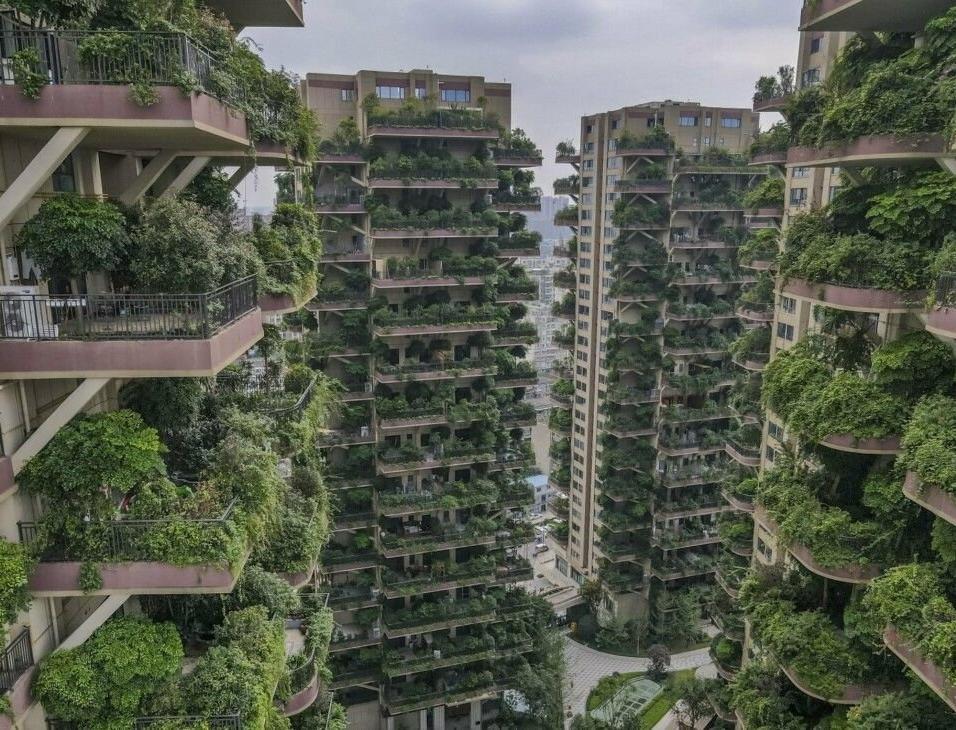 Первый экологичный дом в России возведут к 2024 году