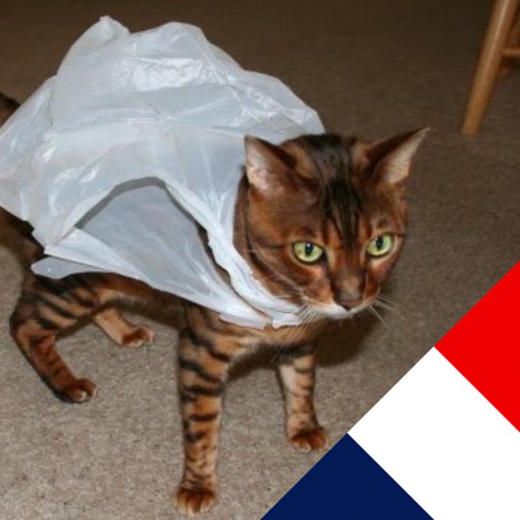 Франция тоже решила отказаться от пластиковых пакетов
