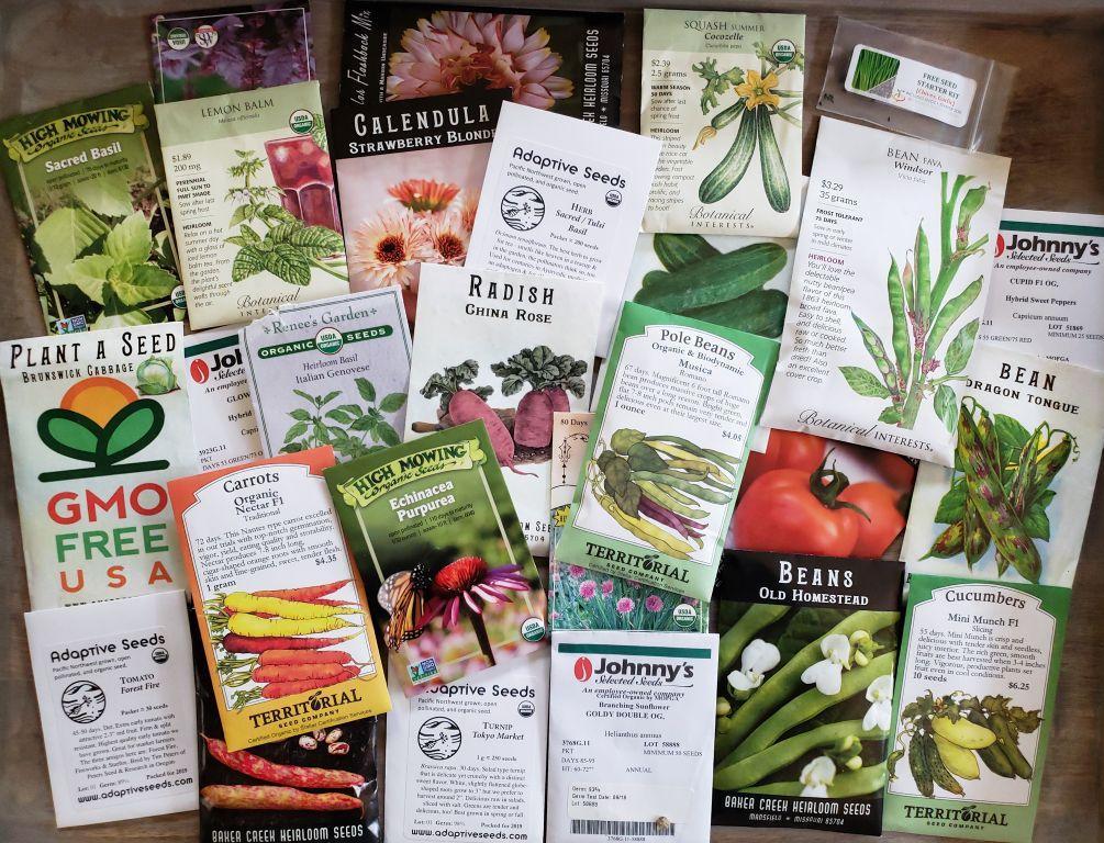 5 интернет-магазинов, в которых можно купить органические семена