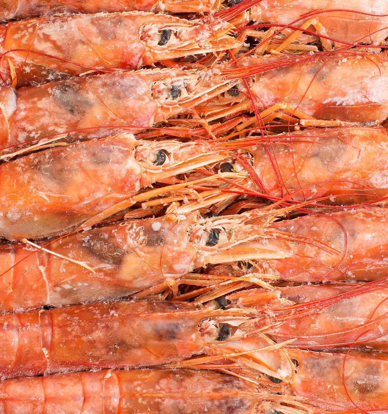 Морепродукты будут упаковывать в биоразлагаемую пленку на основе хитина