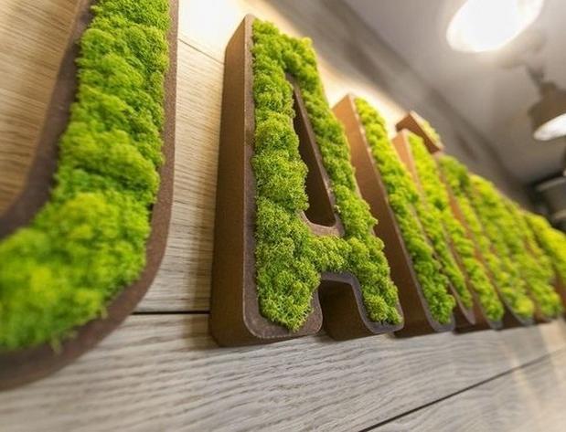 Объявлен конкурс на лучшее название для магазина без отходов