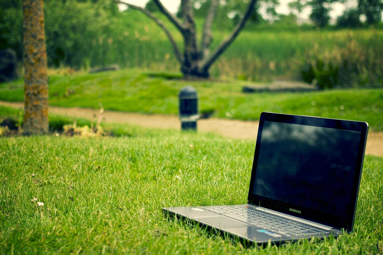 В МГУ открыта запись на бесплатный онлайн-курс об экологических проблемах