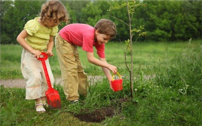 В соцсетях стартовала онлайн-эстафета экологичных дел