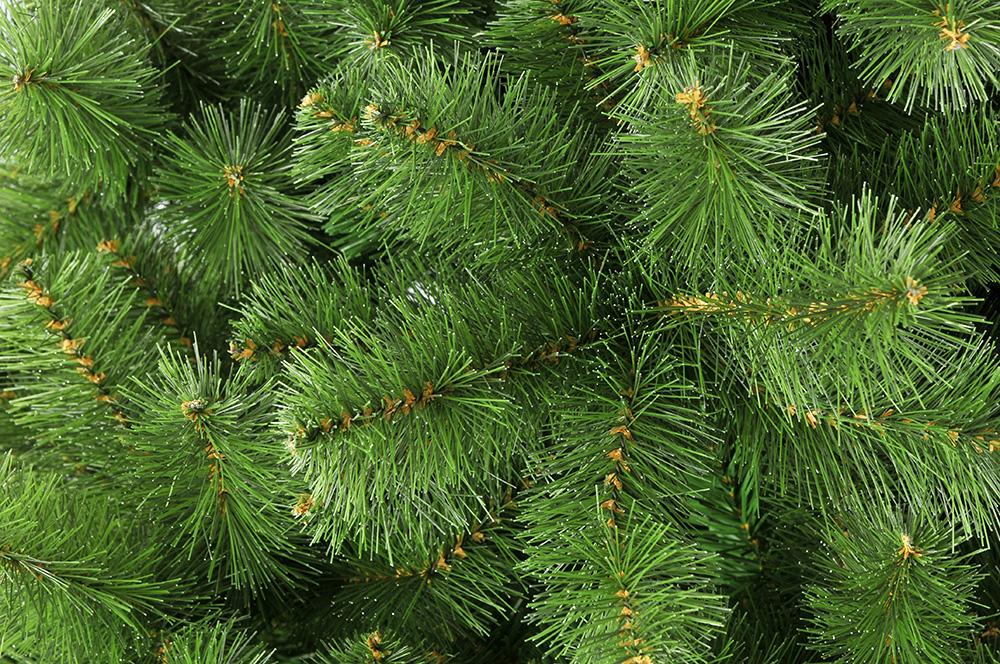 Новогодние елки используют для защиты мест обитания рыб