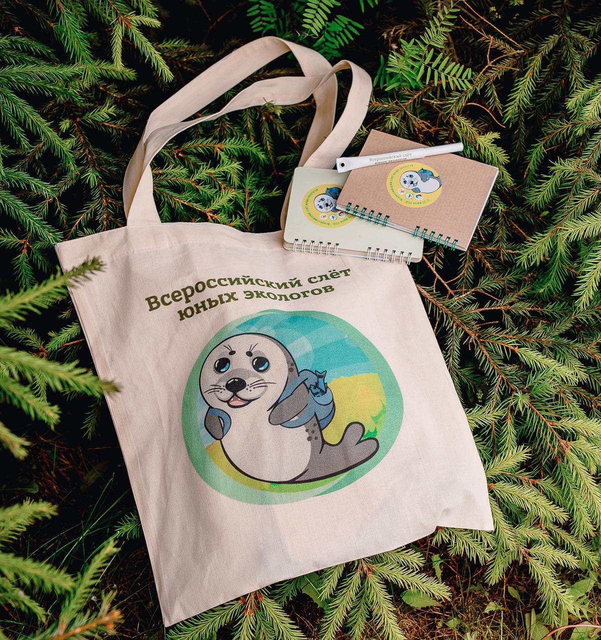 Как экопроект «Тайга» выпускает экологичные и ресурсосберегающие сувениры для компаний