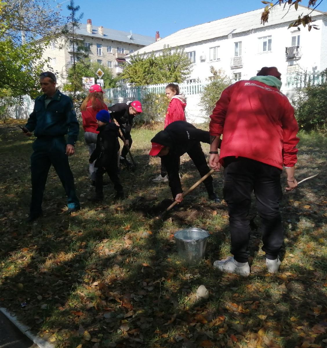В Саратовской области продолжается экологическая акция «Живи, лес!»