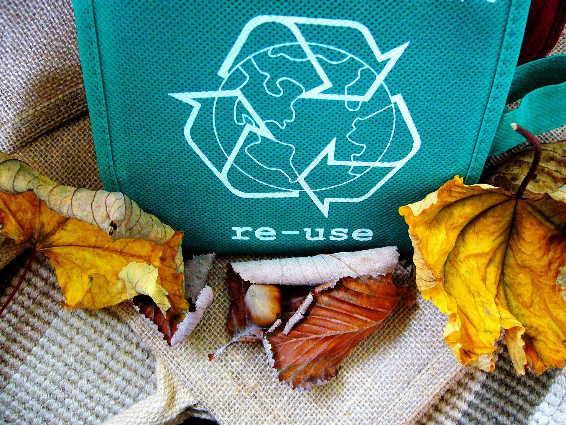 Экологи России объединились и опубликовали меморандум против сжигания и за переработку мусора