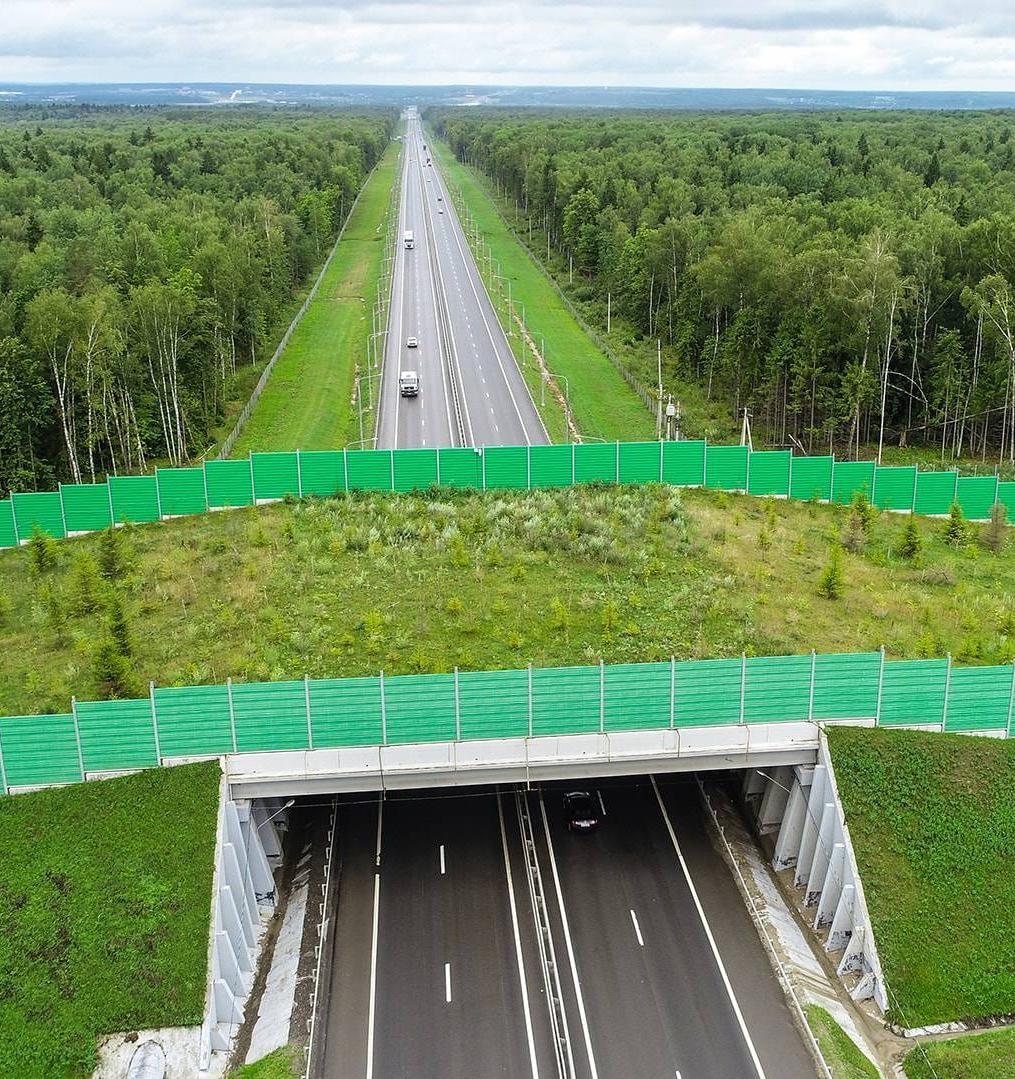 В России утвердили ГОСТ для строительства экодуков
