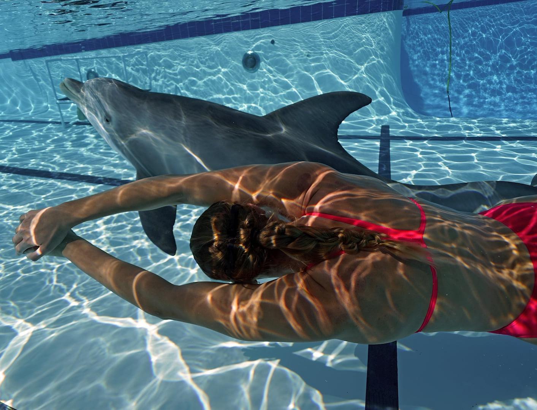 Робот-дельфин сможет заменить животных в шоу