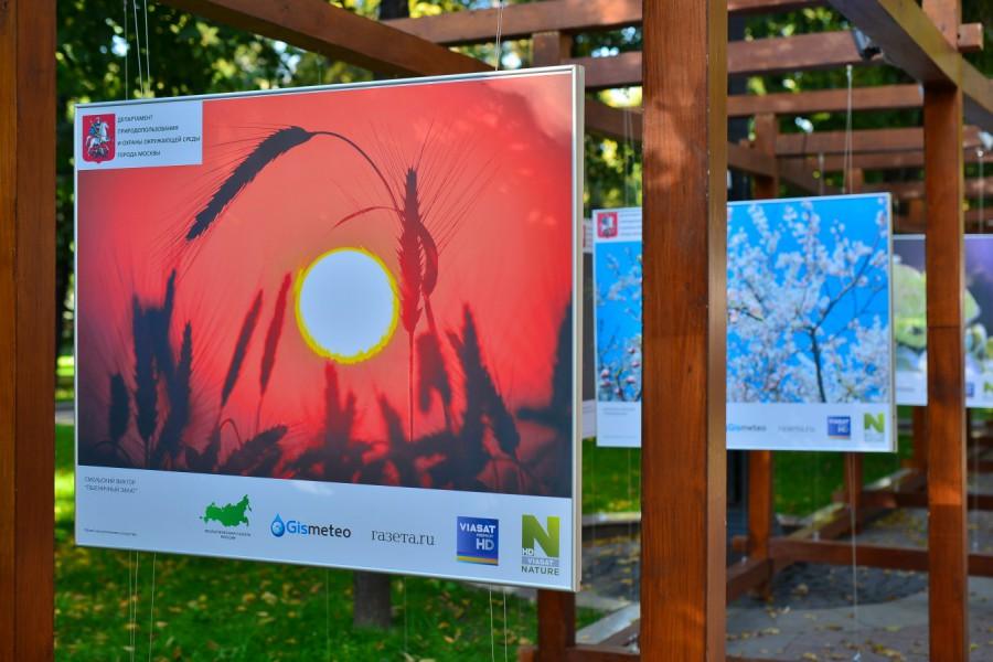 В Москве открылась бесплатная выставка об экологии