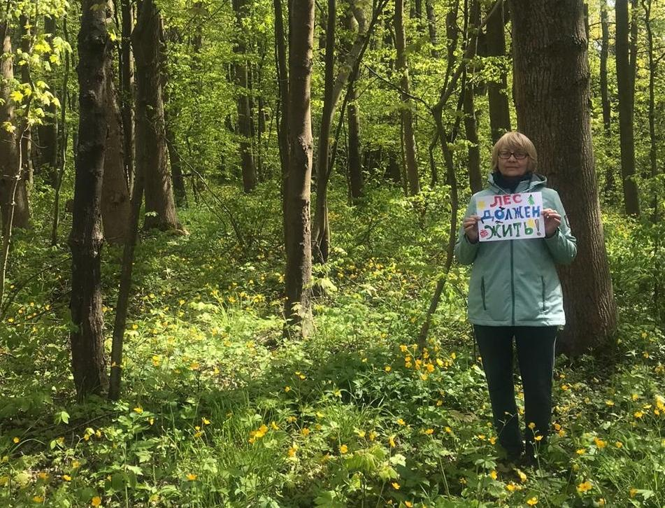 Флешмоб: как жители прибалтийского города хотят защитить старинный лес